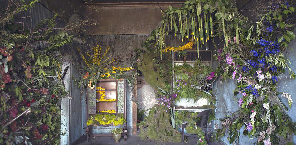 """""""Flower House"""", and the abandoned villa comes back to life with green"""